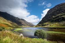Great Britain, Scotland, Scottish Highlands, Glen Coe, Loch Achtriochtan
