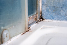 Mold Fungus And Rust Growing In Tile Joints In Damp Poorly Ventilated Bathroom With High Humidity, Wtness, Moisture And Dampness Problem In Bath Areas And Shower