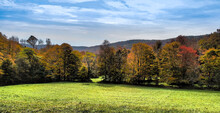 Beautiful Autumn Leaves. Colors Change With The Season On Row Of Trees At Green, Grassy Field's Edge.  Hilltops Behind And Blue Sky With Wispy Clouds Above.  Catskill Mountains, New York State, USA.