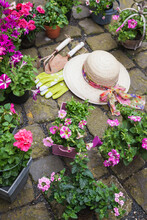 Various Potted Spring And Summer Flowers, Straw Hat, Gardening Tools And Gloves On Cabblestone Pavement