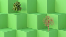 Three Dimensional Render Of One Green And One Bare Tree On Green Cubes