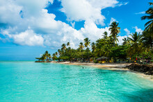 Scenic View Of Palm Trees At Pigeon Point Beach Against Cloudy Sky, Trinidad And Tobago, Caribbean