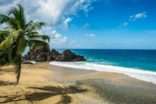 Scenic View Of Sea Against Blue Sky At Tobago During Sunny Day, Caribbean