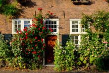Netherlands, Utrecht, Amersfoort, Roses Blooming Beside Entrance Door Of Brick House