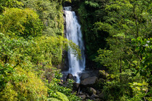 Scenic View Of Trafalgar Falls At Morne Trois Pitons National Park, Dominica, Caribbean
