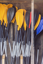 Kayaking Paddles Leaning Against A Wall In Wooden Shed
