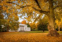 Germany, Hamburg, Blankenese, Godeffroy Haus In Autumn Hirschpark
