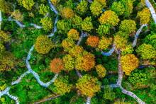 Guangzhou City, Guangdong Province Autumn View