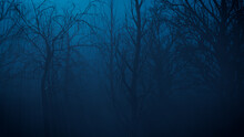Trees In Spooky Woodland. Halloween Background.