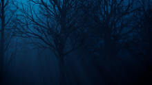 Halloween Trees With Shafts Of Moonlight Shining Through The Branches.