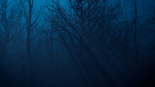 Trees In Eerie Forest. Halloween Background.