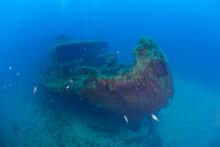 France, Corsica, Underwater View OfÔøΩAlcioneÔøΩC Shipwreck - Italian Tanker Shelled And Sunk During World War II