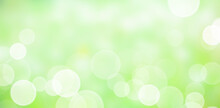 Abstract Blurred Green Bokeh Background. Natural Soft Colours.