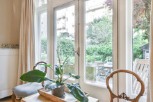 Modern Room Interior With Philodendron In Pot Against Windows