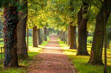 Park, Autumn, Herbst, Travel