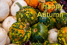 Happy Autumn Message On Background Of Colorful Warty Pumpkins  - Selective Focus