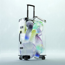 Transparent Luggage With Inflatable Travel Toys