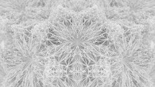 Complexity And Connection In A Monochromatic White Star Fractal
