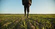 canvas print picture - SLOW MOTION: Farmer walks through a young wheat green field. Bottom view of a man walking in rubber boots in a farmer's field, blue sky over horizon. Human walking on agriculture field