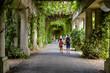 alejka ogrodu i spacerujący ludzie