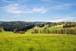 canvas print picture - Landschaft im bayerischen Wald mit Blick zu dem Funkturm Brotjacklriegel mit einer Blumenwiese im Vordergrund, Deutschland