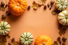 Frame Of Ripe Pumpkins, Dry Oak Leaves, Acorns, Pine Cones On Orange Background. Thanksgiving Day Banner Mockup.