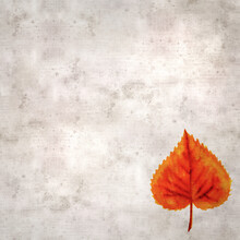 Stylish Textured Old Paper Background With Autumnal Leaves In Color Ink