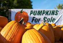 Closeup Of Pumpkins For Sale On A Trailer At A Roadside Farm, Being Sold Using The Honor System. Closeup With Shallow Depth Of Field Focus. Sign Is Out Of Focus.