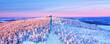 canvas print picture - Wintergipfel
