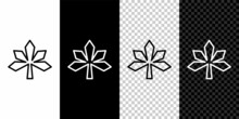 Set Line Chestnut Leaf Icon Isolated On Black And White Background. Vector