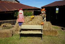Bench Scarecrow
