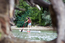 Caucasian Woman Rowing On Stand Up Paddle Board, SUP Alone In River Near Green Trees. Back View