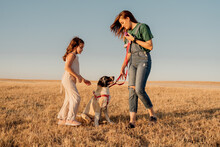Family Having Fun With Their Dog At Field