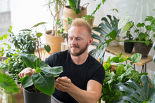 Man Taking Care Of His Plants