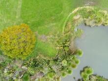 Wetland Park Drone Overhead Shot