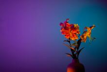 Lilies Bouquet In Fuchsia Neon Blue Purple Light
