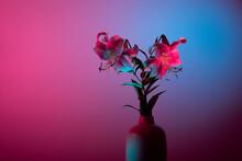 Elegant Japanese Lilies Bouquet In Vase Pink Blue Color