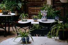 Flowerpots And Plants In Inner Courtyard In Small Town