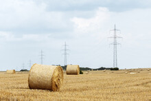 Round Bale Of Straw In The Meadow.