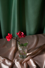Two Pink Roses In A Glass Of Water