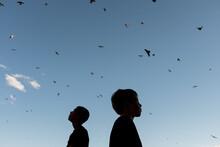 Children Watching A Flock Of Birds Fly Through The Sky.