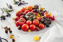 Food : Different Homegrown Tomatos