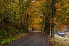 Curving Autumn Road In Vermont