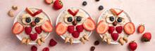 Cute Owl Shaped Breakfast Healthy Oatmeal Porridge For Kids
