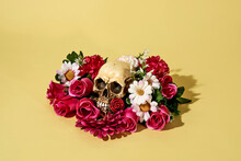 Skull Ornamented With Flowers