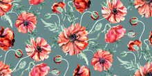 Seamless Watercolor Summer With Red Poppies On A Dark Green Background For Textiles And Surface Design