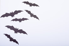 Composition Of Multiple Halloween Black Bats Flying With Copy Space On White Background