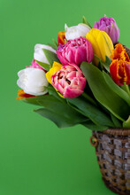 Mix Of Spring Tulips Flowers. Background With Flowers Tulips Close-up Different Colors. Multi-colored Spring Flower. Gift. Red, Pink, White And Yellow. Bouquet In A Basket. Vase.