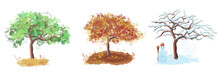 Set Of Different Types Of Three Trees, Summer, Autumn, Winter. A Tree Growing At Different Times Of The Year Summer Flowers, Autumn Leaves, A Snowman.Different Types Of Tree According To The Seasons