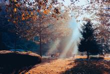 Dikmen Valley In Autumn Foliage On A Foggy Morning - Ankara, Turkey